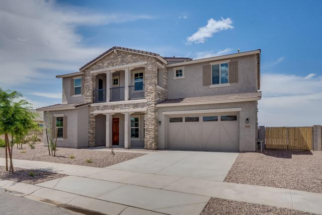 19396 S 194TH Way, Queen Creek, AZ 85142 (MLS #5851045) :: Kepple Real Estate Group