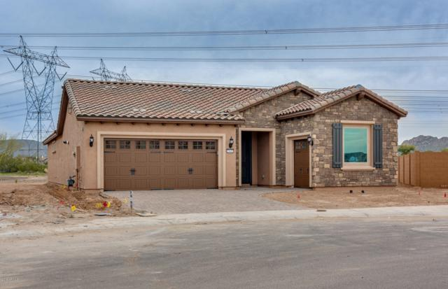 26601 W Matthew Lane, Buckeye, AZ 85396 (MLS #5851554) :: The Results Group