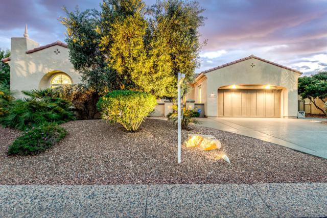 13509 W Figueroa Drive, Sun City West, AZ 85375 (MLS #5851620) :: Keller Williams Realty Phoenix