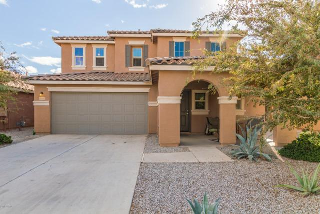 40947 W Mary Lou Drive, Maricopa, AZ 85138 (MLS #5851991) :: Gilbert Arizona Realty