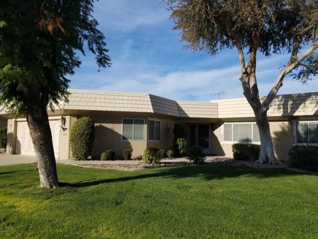 10334 W Pineaire Drive, Sun City, AZ 85351 (MLS #5852091) :: The Daniel Montez Real Estate Group