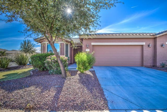 42421 W Candyland Place, Maricopa, AZ 85138 (MLS #5852292) :: Yost Realty Group at RE/MAX Casa Grande