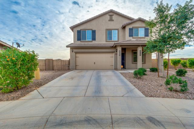 20309 N Mac Neil Street, Maricopa, AZ 85138 (MLS #5852368) :: The W Group