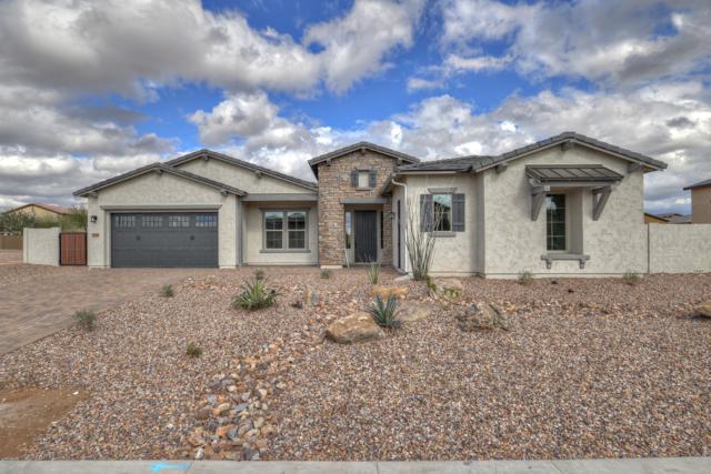 9238 W Via Del Sol, Peoria, AZ 85383 (MLS #5852585) :: Team Wilson Real Estate