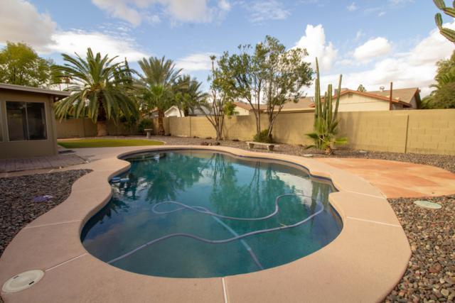 1338 W Los Lagos Vista, Mesa, AZ 85202 (MLS #5852752) :: RE/MAX Excalibur