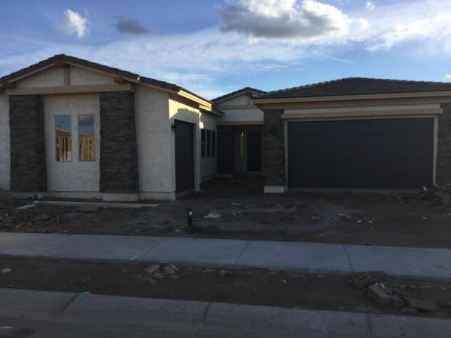 22973 E Camina Buena Vista, Queen Creek, AZ 85142 (MLS #5853127) :: Conway Real Estate