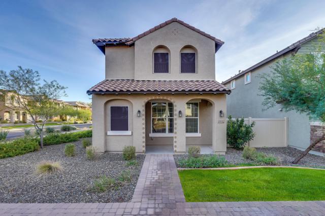 29082 N 124TH Lane, Peoria, AZ 85383 (MLS #5853290) :: Yost Realty Group at RE/MAX Casa Grande