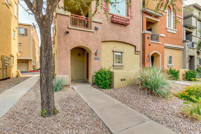 280 S Evergreen Road #1339, Tempe, AZ 85281 (MLS #5853840) :: The Daniel Montez Real Estate Group