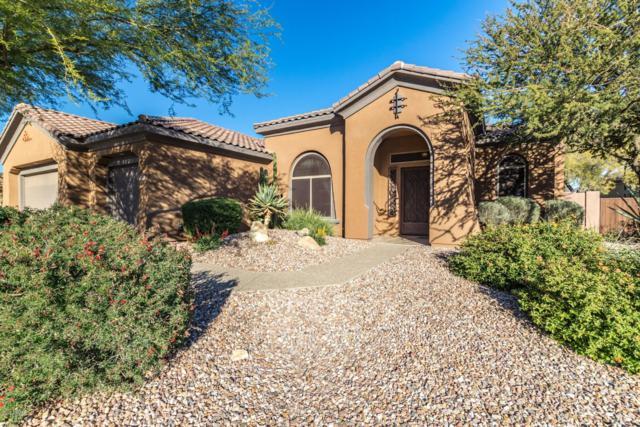 1540 W Laurel Greens Court, Phoenix, AZ 85086 (MLS #5853979) :: The Daniel Montez Real Estate Group