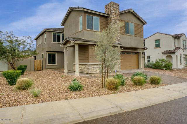29533 N 23RD Lane, Phoenix, AZ 85085 (MLS #5854020) :: RE/MAX Excalibur