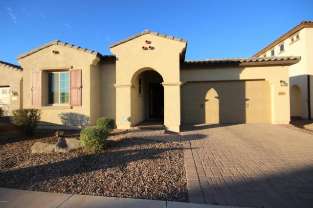 2860 E Citrus Way, Chandler, AZ 85286 (MLS #5854369) :: Kepple Real Estate Group