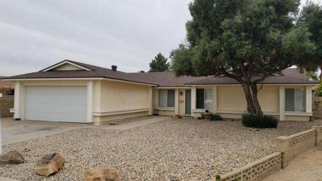4440 N 102ND Drive, Phoenix, AZ 85037 (MLS #5854692) :: RE/MAX Excalibur