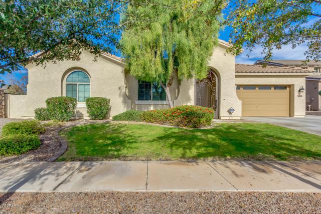 3104 E Packard Drive, Gilbert, AZ 85298 (MLS #5854839) :: Revelation Real Estate