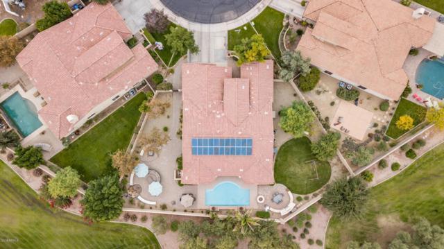 4600 S Verbenia Court, Chandler, AZ 85248 (MLS #5854897) :: Team Wilson Real Estate