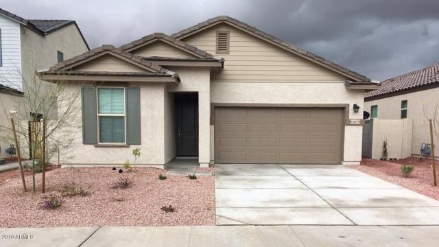 12625 W Junipero Court, Sun City West, AZ 85375 (MLS #5854979) :: CC & Co. Real Estate Team