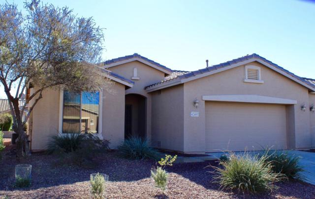 42485 W Jawbreaker Drive, Maricopa, AZ 85138 (MLS #5855190) :: CC & Co. Real Estate Team