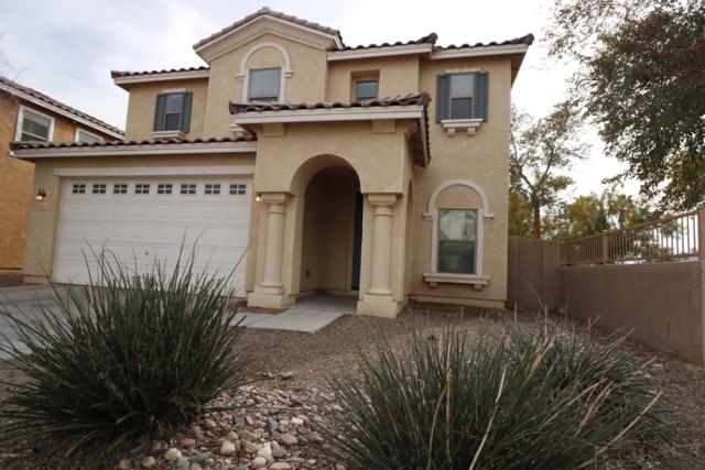 6351 W Branham Lane, Laveen, AZ 85339 (MLS #5855325) :: The Property Partners at eXp Realty