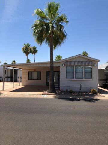 3710 S Goldfield Road, Apache Junction, AZ 85119 (MLS #5855354) :: Riddle Realty Group - Keller Williams Arizona Realty