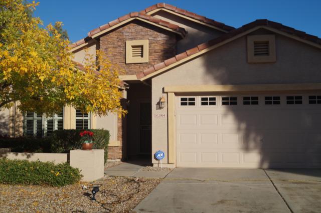 21904 E Via Del Rancho, Queen Creek, AZ 85142 (MLS #5855376) :: Relevate   Phoenix