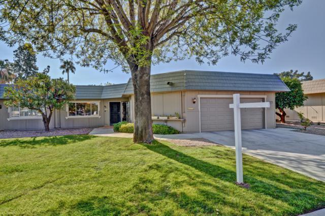 10419 W Campana Drive, Sun City, AZ 85351 (MLS #5855443) :: The Daniel Montez Real Estate Group