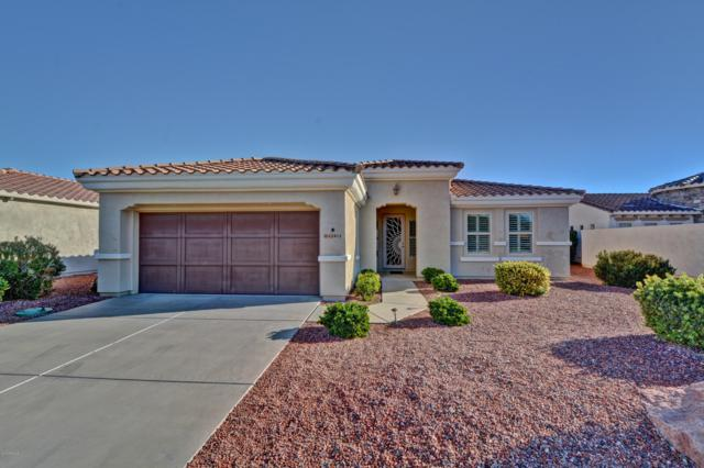 22413 N Montecito Avenue, Sun City West, AZ 85375 (MLS #5855479) :: Desert Home Premier
