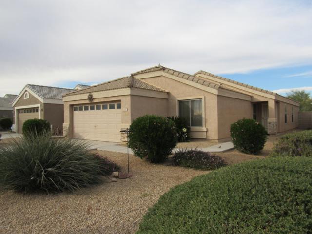 12120 W Caribbean Lane, El Mirage, AZ 85335 (MLS #5856099) :: Devor Real Estate Associates
