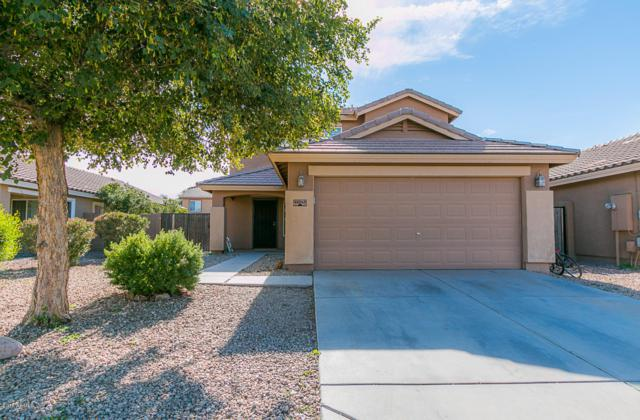 41243 W Little Drive, Maricopa, AZ 85138 (MLS #5856291) :: The Property Partners at eXp Realty