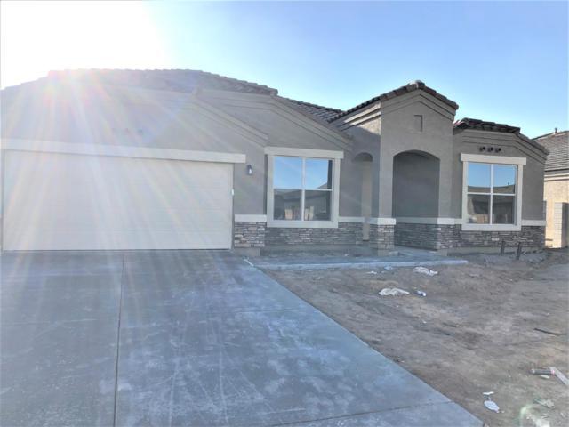 597 W Belmont Red Trail, San Tan Valley, AZ 85143 (MLS #5856660) :: Kepple Real Estate Group