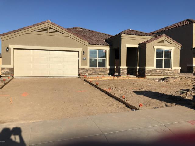 646 W Belmont Red Trail, San Tan Valley, AZ 85143 (MLS #5856713) :: Kepple Real Estate Group