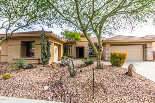 40223 N Lytham Way, Phoenix, AZ 85086 (MLS #5856716) :: Riddle Realty