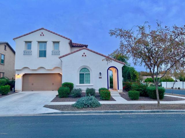 13591 N 150TH Avenue, Surprise, AZ 85379 (MLS #5857325) :: The Jesse Herfel Real Estate Group
