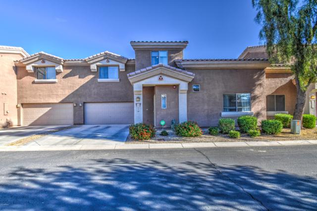 15699 N 79TH Lane, Peoria, AZ 85382 (MLS #5857455) :: Kortright Group - West USA Realty