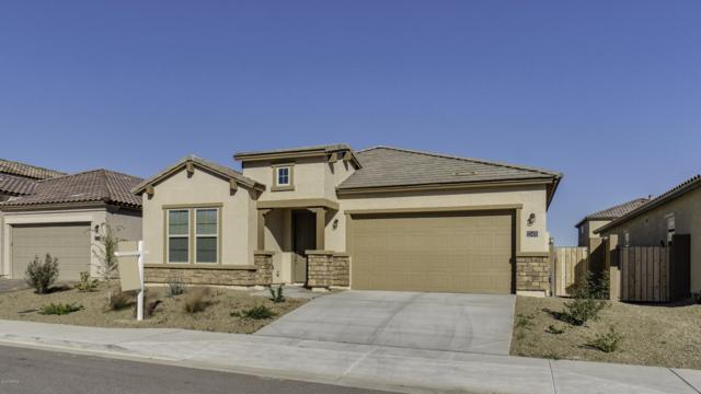 22425 N 101ST Avenue, Peoria, AZ 85383 (MLS #5858225) :: CC & Co. Real Estate Team