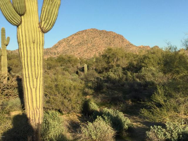8675 E Yearling Road, Scottsdale, AZ 85255 (MLS #5858262) :: Yost Realty Group at RE/MAX Casa Grande