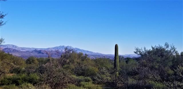 29500 N 162nd Street, Scottsdale, AZ 85262 (MLS #5858703) :: Team Wilson Real Estate