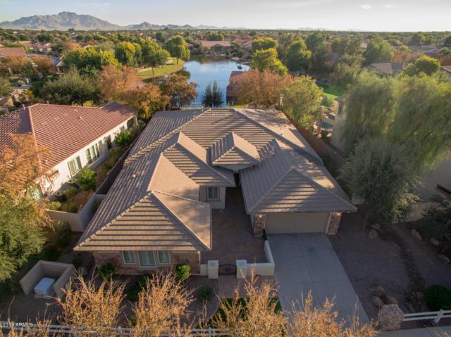 3711 E Old Stone Circle N, Chandler, AZ 85249 (MLS #5858927) :: The Daniel Montez Real Estate Group
