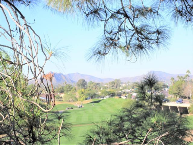 4303 E Cactus Road #433, Phoenix, AZ 85032 (MLS #5858939) :: Arizona 1 Real Estate Team