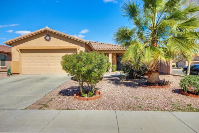 24968 W Dove Trail, Buckeye, AZ 85326 (MLS #5859124) :: Yost Realty Group at RE/MAX Casa Grande