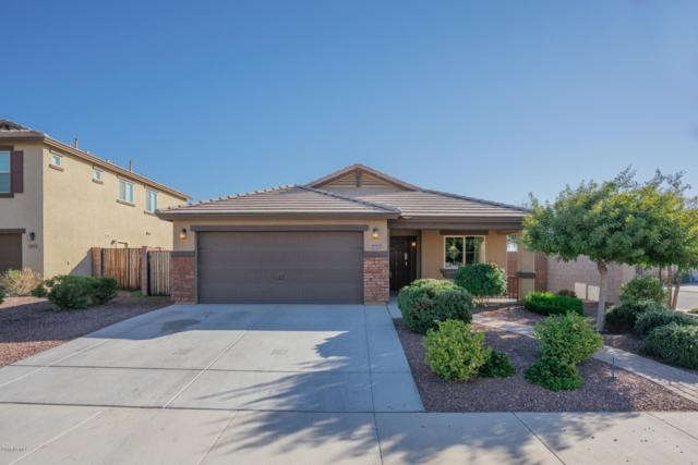 3915 S 186TH Lane, Goodyear, AZ 85338 (MLS #5859202) :: Kortright Group - West USA Realty