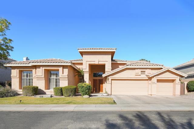 1502 E Silverwood Drive, Phoenix, AZ 85048 (MLS #5859432) :: The W Group