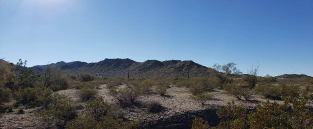 9090 S San Thomas Circle, Goodyear, AZ 85338 (MLS #5859680) :: Nate Martinez Team