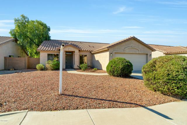 16142 N Naegel Drive, Surprise, AZ 85374 (MLS #5859704) :: Yost Realty Group at RE/MAX Casa Grande