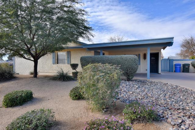 13810 N 38TH Place, Phoenix, AZ 85032 (MLS #5859748) :: Conway Real Estate