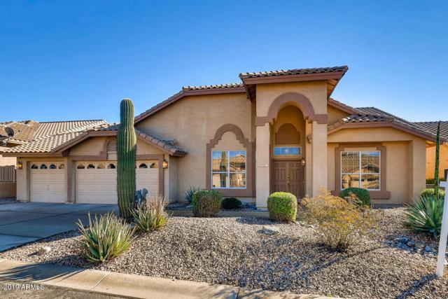 8985 E Brittle Bush Road, Gold Canyon, AZ 85118 (MLS #5859778) :: The Property Partners at eXp Realty
