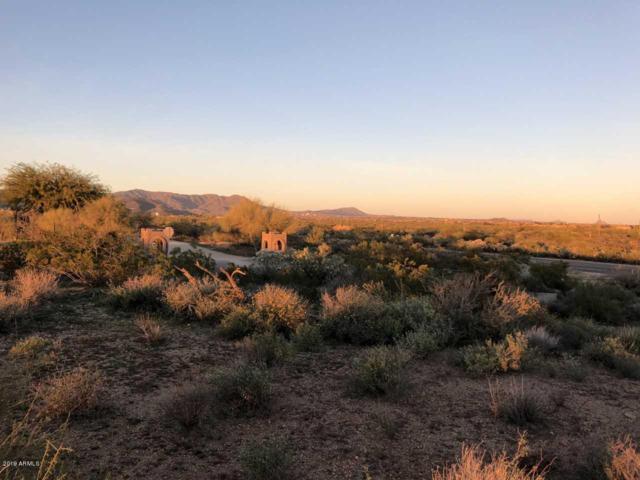 34597 N 87TH Way, Scottsdale, AZ 85266 (MLS #5859973) :: Yost Realty Group at RE/MAX Casa Grande
