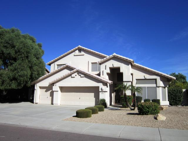 2173 N 133RD Avenue, Goodyear, AZ 85395 (MLS #5860170) :: The W Group