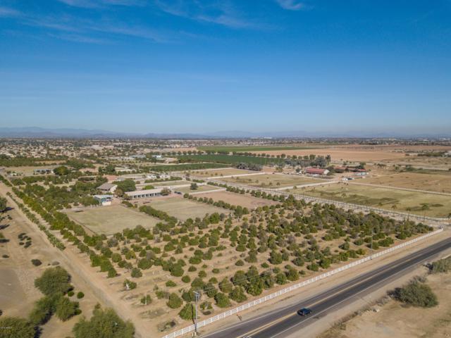 14014 N 172nd Avenue, Surprise, AZ 85388 (MLS #5860465) :: Yost Realty Group at RE/MAX Casa Grande