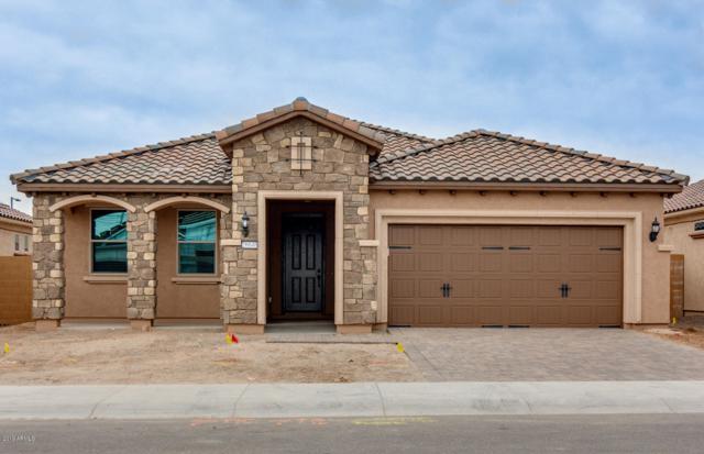 26646 W Matthew Lane, Buckeye, AZ 85396 (MLS #5860549) :: The Results Group