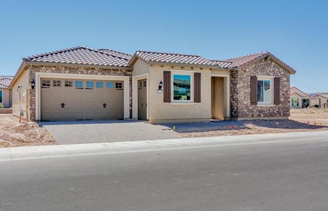 26623 W Covey Lane, Buckeye, AZ 85396 (MLS #5860614) :: The Results Group