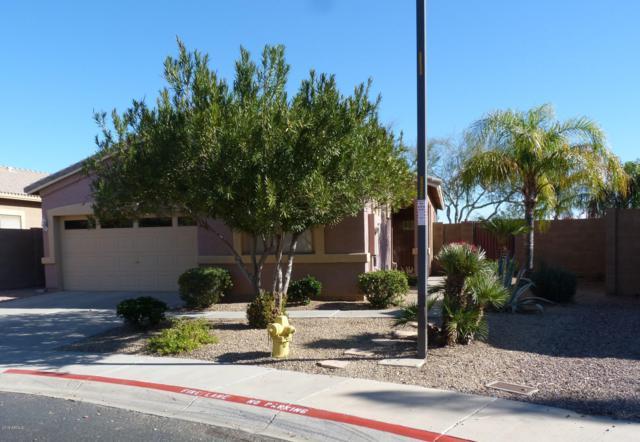 1053 S 99TH Place, Mesa, AZ 85208 (MLS #5860669) :: Conway Real Estate